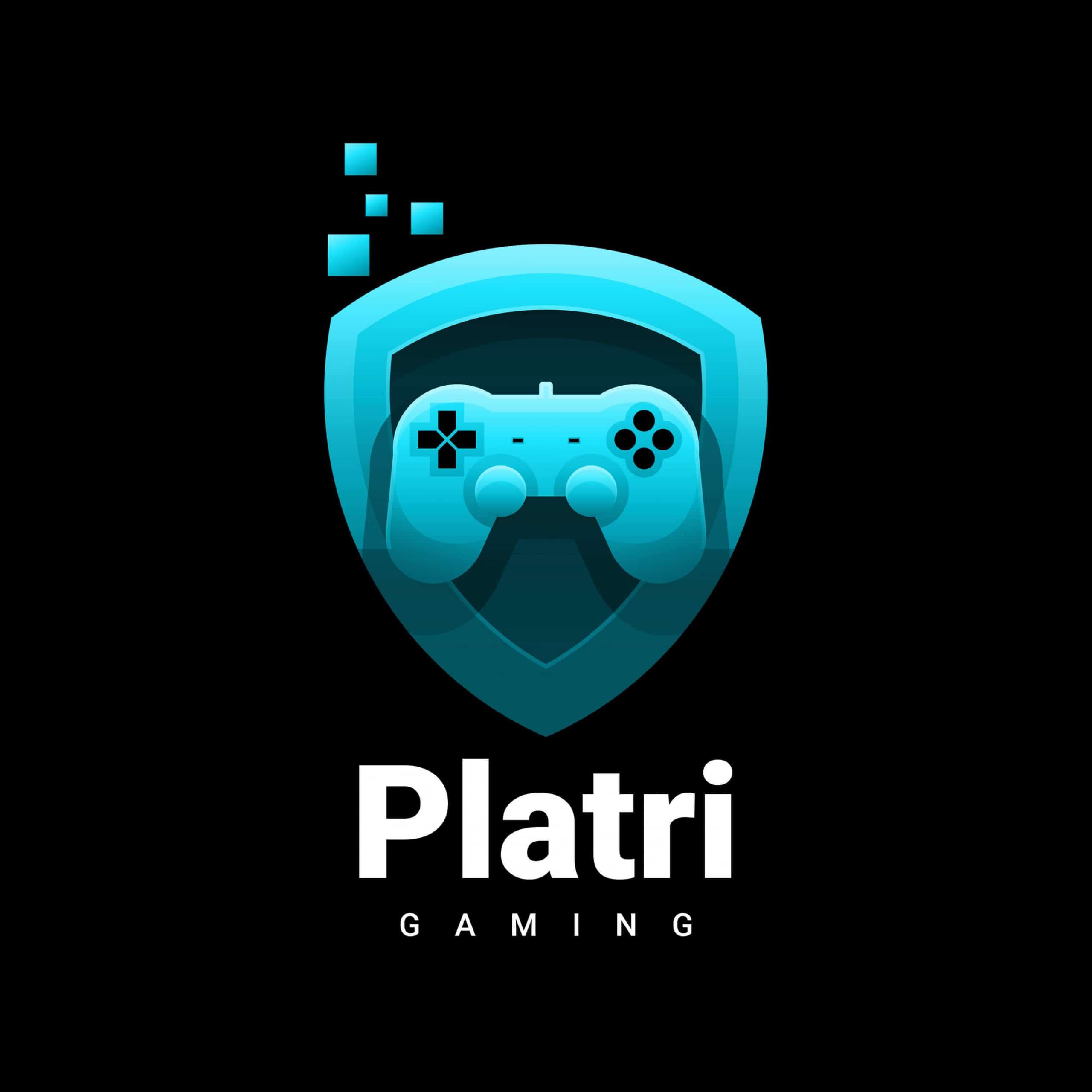 Game Development bei Platri IT